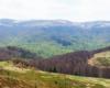 Widok z Bukowego Berda w kierunku Tarnicy i Szerokiego Wierchu, gdzie początkiem maja jeszcze zalega śnieg na północnych zboczach w Bieszczadzkim Parku Narodowym.