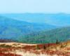 Kształty gór podziwiane z Bukowego Berda w stronę Otrytu podczas wycieczki jednodniowej z Mucznego po Bieszczadzkim Parku Narodowym.