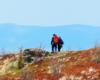 Turyści wędrujący po szlaku na Bukowym Berdzie - czy ktoś z Was nie chciałby się wybrać na taką wycieczkę w Bieszczady?