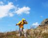 Zapytanie skierowane do wędrowca na szlaku na Bukowym Berdzie w Bieszczadzkim Parku Narodowym skierowane podczas silnego wiatru... ;-)