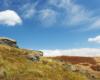Chmurki nad Bukowym Berdzie w słoneczny dzień w Bieszczadzkim Parku Narodowym.