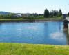 Zapora wodna tworząca Jezioro Sieniawskie widziana od wschodniej strony rzeki Wisłok, która tworzy jezioro, a wszystko powstało w 1978 roku.