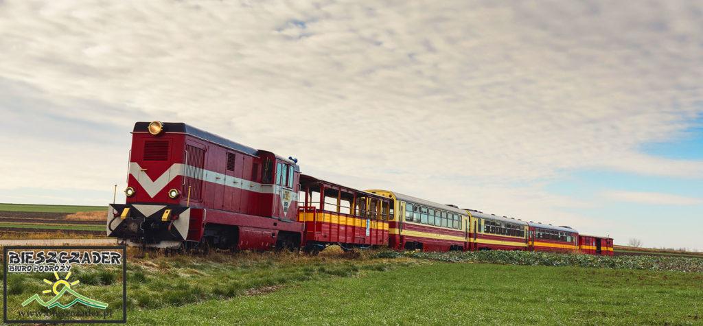"""Zdjęcie przedstawiające kolejkę wąskotorową Pogórzanin na wycieczce jednodniowej, którą nazwaliśmy """"KOLEJ na Łańcut"""" z najważniejszymi atrakcjami w Województwie Podkarpackim: przejazd ciuchcią, przejazd przez Markową i zwiedzanie Rzeszowa."""