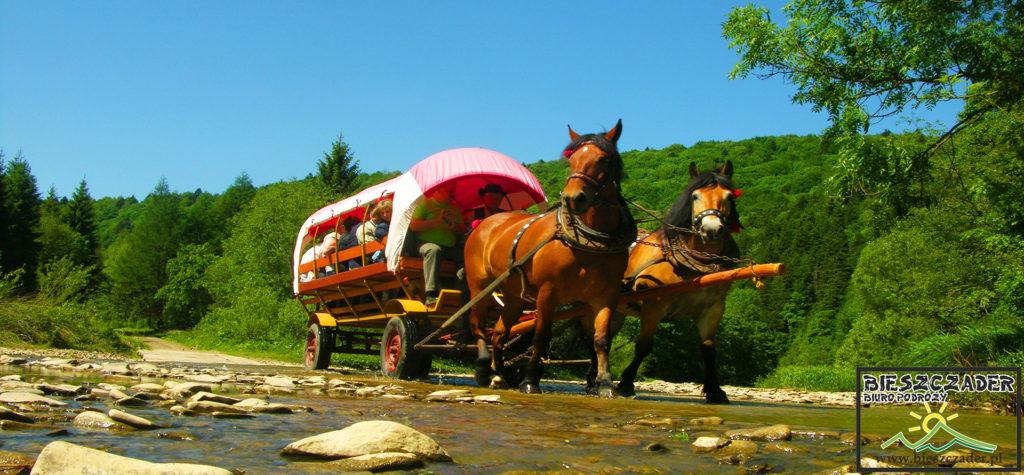 Dyliżanse, czyli wozy ciągnięte przez konie na wycieczce jednodniowej TRAPERSKA PRZYGODA po Bieszczadach - to Najlepszy Produkt Turystyczny Województwa Podkarpackiego 2012 roku i jedna z najciekawszych atrakcji i przygód w Bieszczadach.