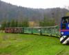 Przejazd bieszczadzką kolejką leśną pośród gór - to jedna z największych atrakcji Bieszczad zlokalizowana w okolicach Cisnej.