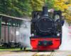 Jedna z lokomotyw parowych bieszczadzkiej kolejki leśnej na stacji kolejowej w Majdanie - to jedna z najciekawszych i najlepszych atrakcji turystycznych w Bieszczadach.