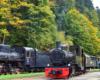 3 lokomotywy na stacji głównej bieszczadzkiej ciuchci w Majdanie koło Cisnej - dwie parowe i jedna spalinowa - czy ktoś nie chciałbym wybrać się na wycieczkę jednodniową taką atrakcją bieszczadzką?