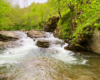 Kaskada w Nasicznem to jeden z najpiękniejszych wodospadów w Bieszczadach, który jest położony między Połoniną Wetlińską, a Połoniną Caryńską - zwiedzamy tę atrakcję na wycieczce jednodniowej Bieszczady w pigułce, czyli wycieczce śladami serialu kryminalnego Wataha.