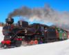 Bieszczadzka kolejka leśna podczas zimowego kursu w miejscowości Żubracze - wtedy niektórzy tę największą atrakcję Bieszczad nazywają kuligiem zimowym :-)
