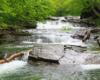 Wodospad zwany kaskadą w Nasicznem to jeden z najpiękniejszych wodospadów w Bieszczadach, który odwiedzamy na wycieczce jednodniowej Bieszczady w pigułce, a znajduje się między Połoniną Wetlińską, a Połoniną Caryńską.