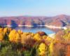 Tak kolorowe zdjęcie możeci wykonać tylko jesienią, gdy nad Zalewem Solińskim jest najbardziej kolorowo - zapraszamy do składania rezerwacji na wycieczkę jednodniową Bieszczady w pigułce, na której pokazujemy miejsca, gdzie był kręcony film Wataha.