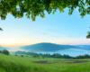Tu drzewa wykonały naturalną ramkę nad mgłami unoszącymi się na Zalewem Myczkowieckim i otulającymi serce związane z romantyczną historią właścicieli Hotelu Solinianka...