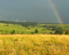 Tęcza na pograniczu Bieszczad i Beskidu Niskiego - czyż wtedy gdy pada deszcz w Bieszczadach nie jest pięknie? O każdej pogodzie warto się wybrać i odszukać atrakcje w Województwie Podkarpackim.