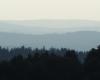 Wiatraki w paśmie góry Dziady między Wysoczanami, a Bukowskiem.