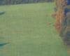 Jedyny jeleń uchwycony aparatem na granicy Bieszczad i Beskidu Niskiego podczas rykowiska początkiem jesieni w Województwie Podkarpackim.