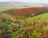 Czerwona wyspa utworzona przez buki jesienią w Wysoczanach - jesień to najpiękniejsza pora roku zarówno w Bieszczadach, jak i w Beskidzie Niskim.