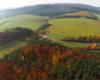 Lasy i łąki w pobliżu skrzyżowania dróg prowadzących ze Szczawnego w stronę Bukowska i Rymanowa w Wysoczanach.