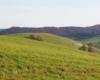 Kształty gór na pograniczu Bieszczad i Beskidu Niskiego podziwiane z góry Żurawinka w Wysoczanach...