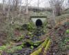 Jeden z potoków przepływający pod trasą bieszczadzkich kuligów.