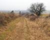 Po lewej trasa, którędy bieszczadzka kolejka leśna jeździła od końca XIX wieku, a po prawej w dolinie trasa uruchomiona w latach 50-tych (nowa), a teraz tą starszą trasą organizujemy kuligi.