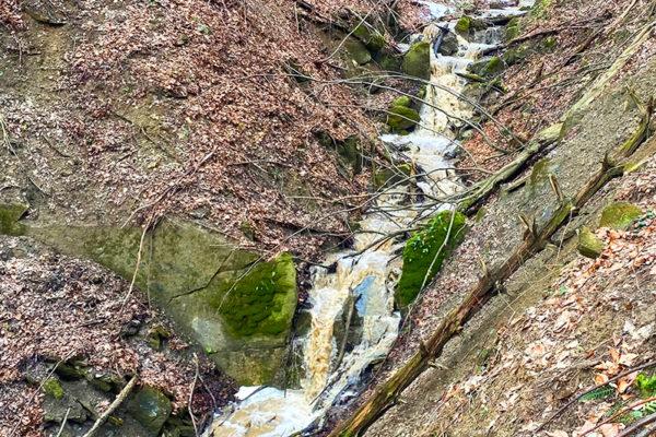 Potok spływający z góry Biały Wierch 597m do rzeki Osława i liczne na nim wodospady, kaskady oraz stare drzewa i atrakcje.